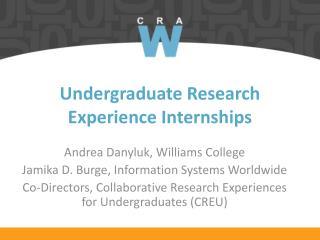 Undergraduate Research Experience Internships