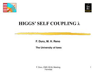HIGGS� SELF COUPLING  ?