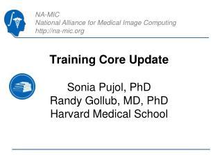 Training Core Update Sonia Pujol, PhD Randy Gollub, MD, PhD Harvard Medical School