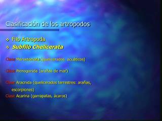 Clasificaci n de los artropodos
