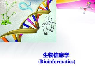 生物信息学  (Bioinformatics)