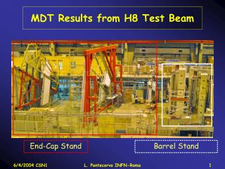 MDT Results from H8 Test Beam