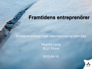 Framtidens entrepren�rer