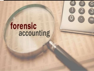 Forensic Accounting  Fraud Investigation