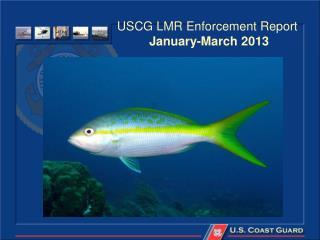 USCG LMR Enforcement Report  January-March 2013
