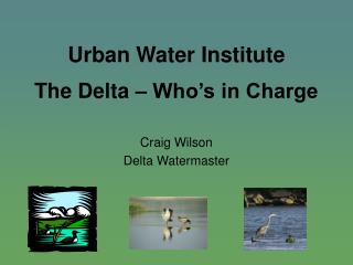 Urban Water Institute The Delta � Who�s in Charge