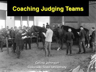 Coaching Judging Teams