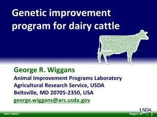 Genetic improvement program for dairy cattle