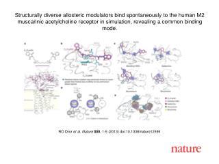 RO  Dror et al. Nature  000 , 1-5 (2013)  doi:10.1038/nature12595