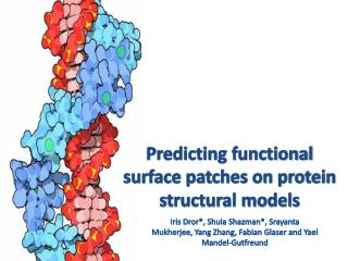 Predicting functional surface patches on protein structural models