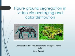 Figure ground segregation in video via averaging and color distribution