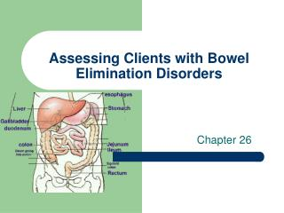 Assessing Clients with Bowel Elimination Disorders