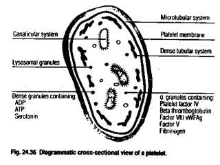 Hemostatic process