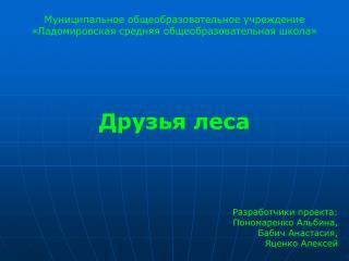 Муниципальное общеобразовательное учреждение «Ладомировская средняя общеобразовательная школа»