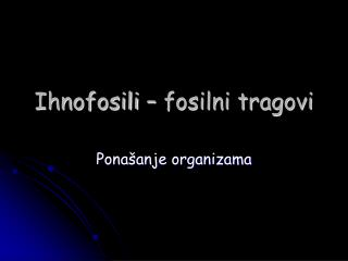 Ihnofosili – fosilni tragovi