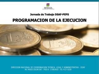 Jornada de Trabajo DSAF-PEPS PROGRAMACION DE LA EJECUCION