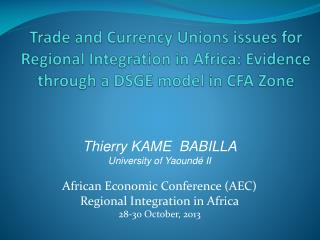 Thierry KAME  BABILLA University of Yaoundé II  African Economic Conference (AEC)