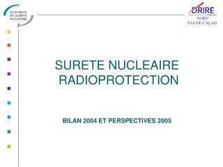 SURETE NUCLEAIRE  RADIOPROTECTION BILAN 2004 ET PERSPECTIVES 2005
