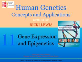 Gene Expression Through Time and Tissue