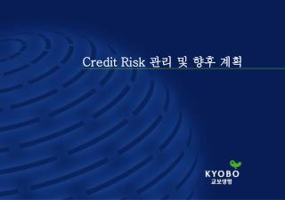 Credit Risk  관리 및 향후 계획