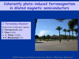 Coherently photo-induced ferromagnetism  in diluted magnetic semiconductors