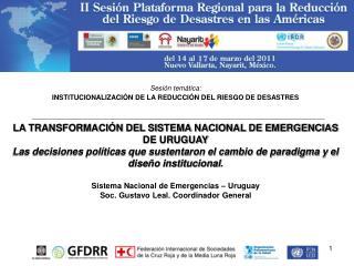 Sesión temática: INSTITUCIONALIZACIÓN DE LA REDUCCIÓN DEL RIESGO DE DESASTRES