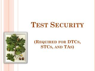 Test Security (Required for DTCs, STCs, and TAs)