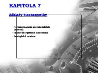 KAPITOLA 7