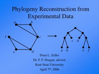 Phylogeny Reconstruction from Experimental Data