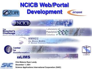 NCICB Web/Portal Development