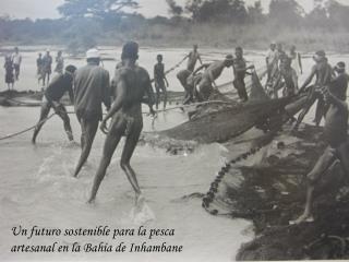 Un futuro sostenible para la pesca artesanal en la Bahía de Inhambane