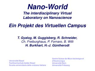 Nano-World The interdisciplinary Virtual  Laboratory on Nanoscience