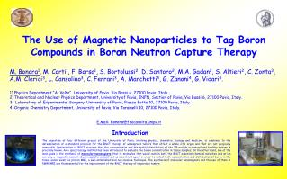 The Use of Magnetic Nanoparticles to Tag Boron Compounds in Boron Neutron Capture Therapy