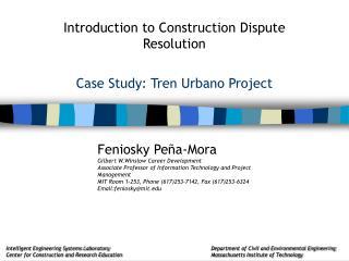 Case Study: Tren Urbano Project
