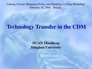 Technology Transfer in the CDM