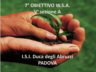 7° OBIETTIVO W.S.A. V ª  sezione A  I.S.I. Duca degli Abruzzi PADOVA