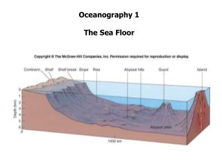 Oceanography 1 The Sea Floor