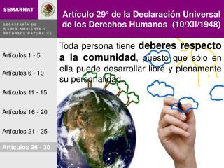Artículo 29° de la Declaración Universal de los Derechos Humanos  (10/XII/1948)