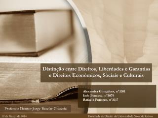 Distinção entre Direitos, Liberdades e Garantias e Direitos Económicos, Sociais e Culturais