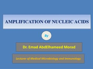 AMPLIFICATION OF NUCLEIC ACIDS