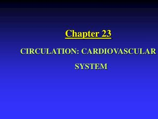Chapter 23 CIRCULATION: CARDIOVASCULAR SYSTEM