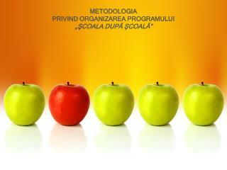 """METODOLOGIA PRIVIND ORGANIZAREA PROGRAMULUI  """"ŞCOALA DUPĂ ŞCOALĂ"""""""