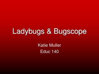 Ladybugs & Bugscope
