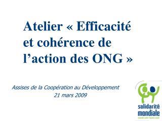 Atelier ��Efficacit� et coh�rence de l�action des ONG��