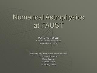 Numerical Astrophysics at FAUST