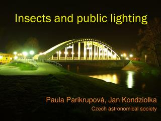 Insects and public lighting