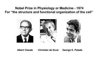 Nobel Prize in Physiology or Medicine - 1974