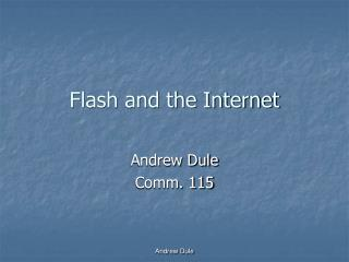 Flash and the Internet