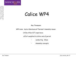 Calice WP4