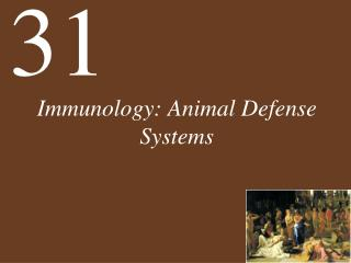 Immunology: Animal Defense Systems